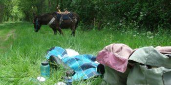 L'intermodalité dans la randonnée