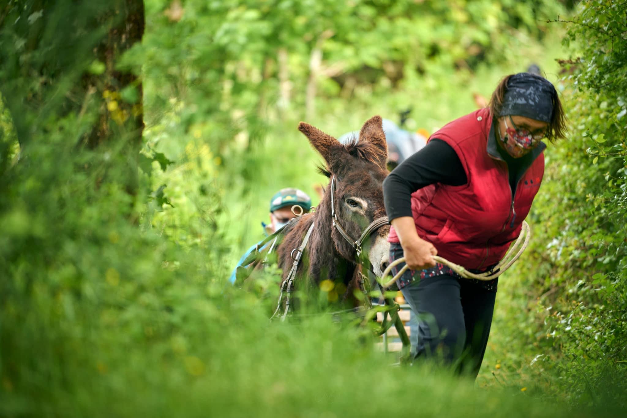 randonnée âne pays de la loire